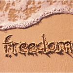 これからネットビジネスをする人必見!!ネットビジネスで自由になるとは限らない??