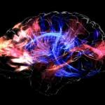身体も脳も「現状維持」は不可能