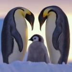 ビットコインの特徴をペンギンにでもわかるようにまとめてみた2