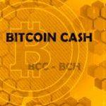 【仮想通貨】Bitcoin Cash(ビットコインキャッシュ)がUPbitでウォンでの取引開始や一時30万円台になったこと、11月13日にBCH Classicが誕生する可能性についてまとめてみた