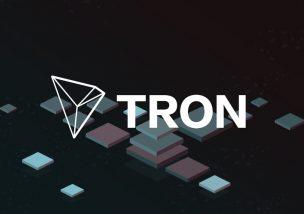 TRON(トロン) Whitepaper(ホワイトペーパー) 盗用 問題