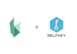 KyberNetwork(カイバーネットワーク) SelfKey(セルフキー) 提携