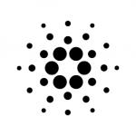 【仮想通貨】Cardano(カルダノ)の3月のRoadmap(ロードマップ)が更新!?トルコの取引所Vebitcoinに上場!?情報についてまとめてみた