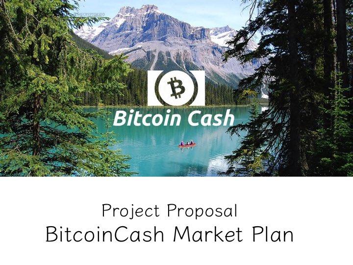 BitcoinCash(ビットコインキャッシュ) 3月 好材料 BitcoinCash Market