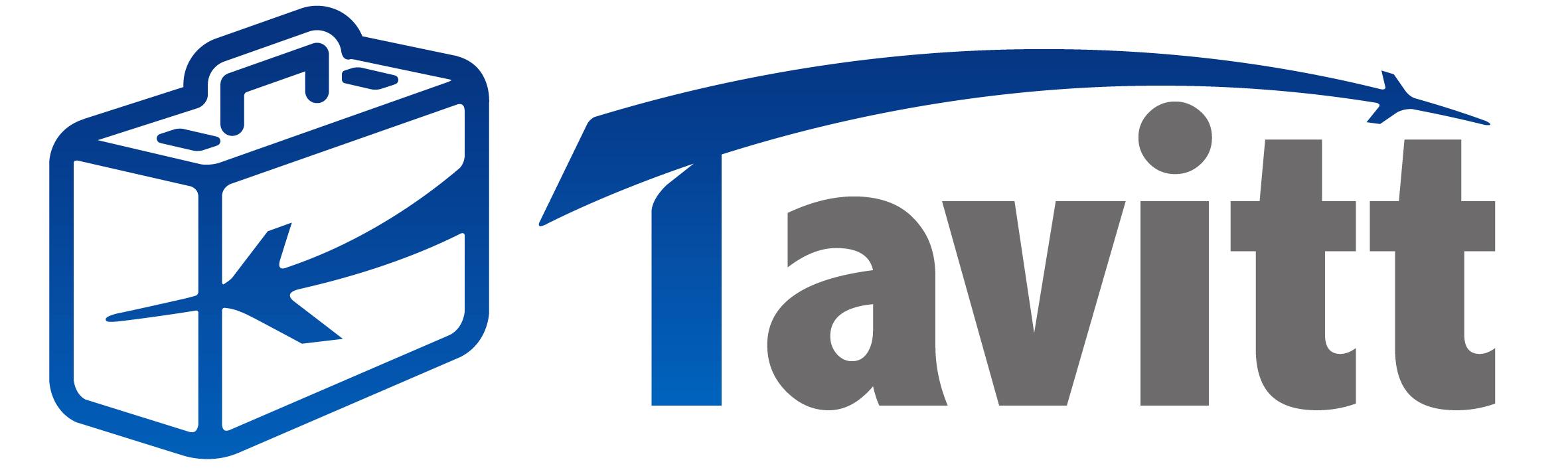 Tavitt 金融庁 日本居住者 ICO 購入 不可
