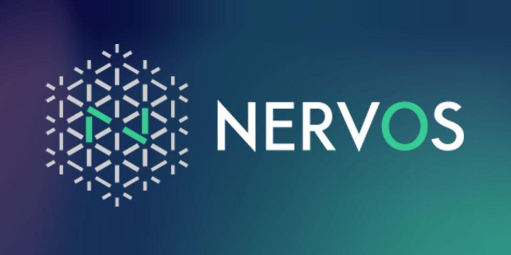 Nervos(ナルボス) ICO
