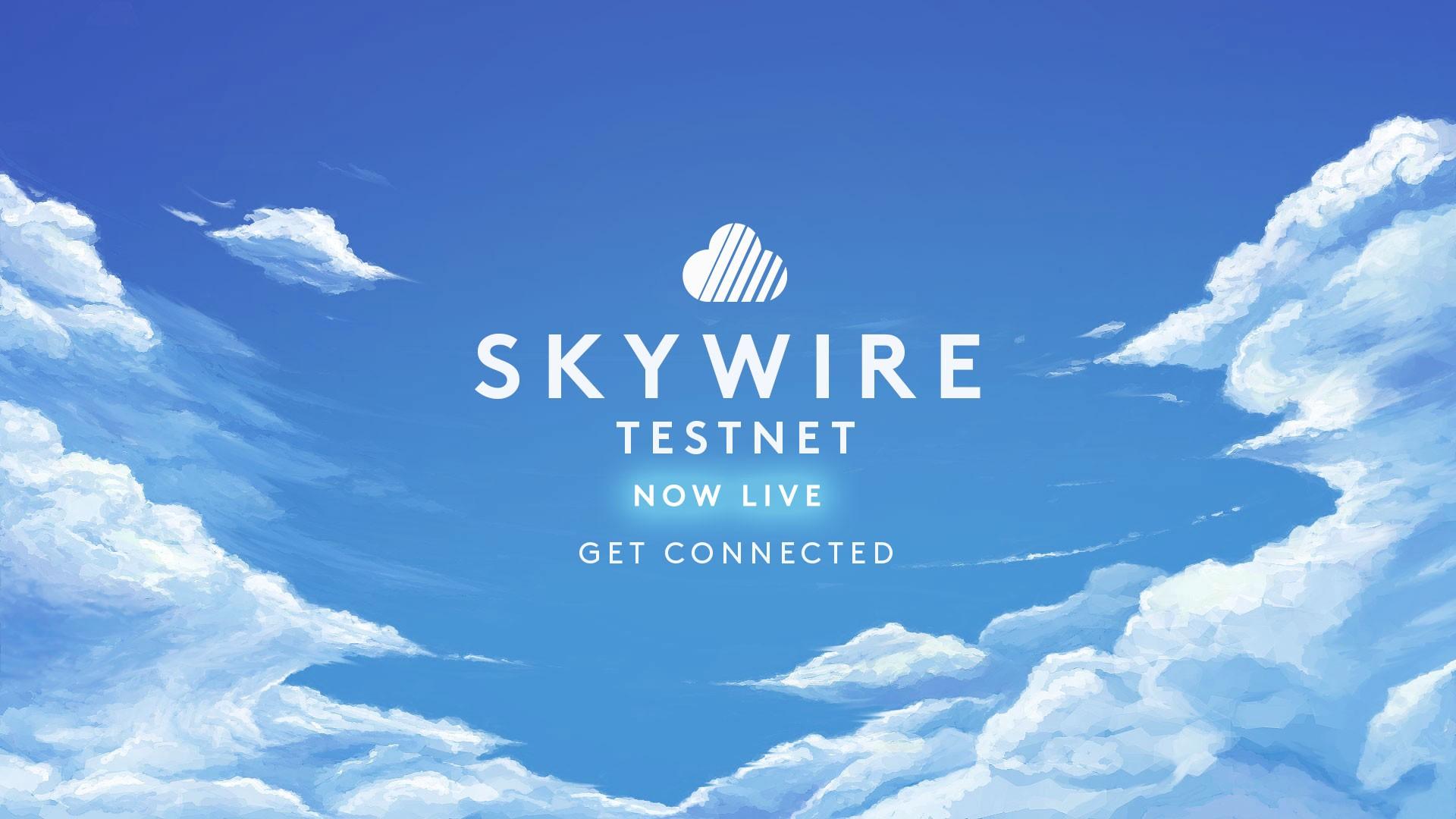 Skycoin(スカイコイン) Skywire テストネット
