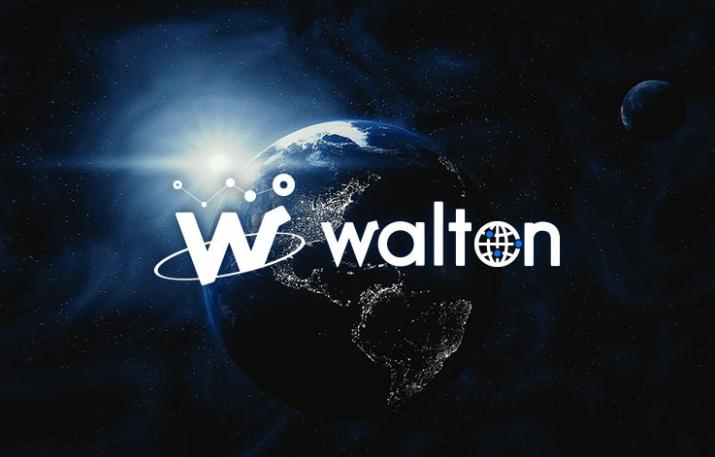 2020年 時価総額 ランキング Walton(ウォルトン)