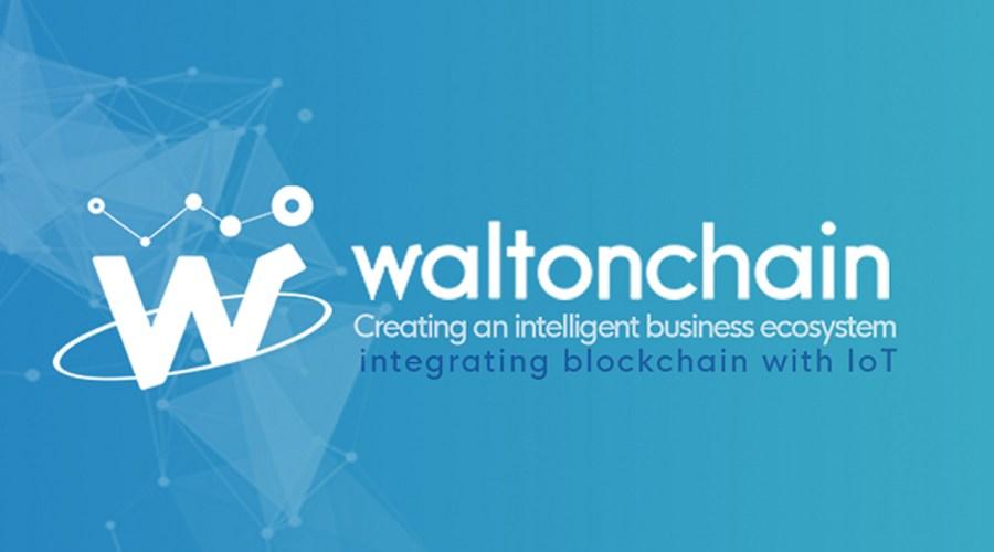 Walton(ウィルトン) Walton Chain