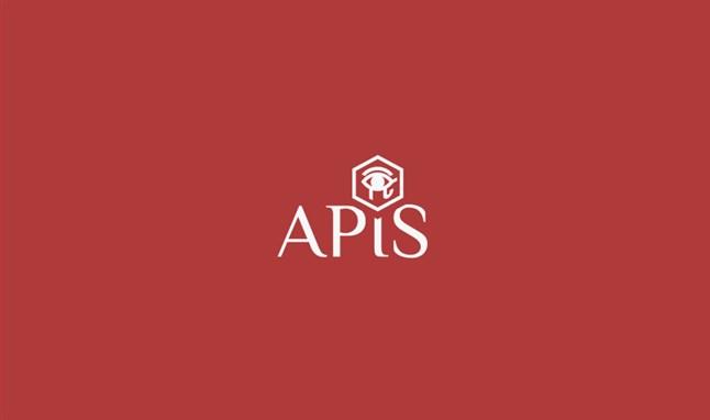 APIS(エイピス) 6月1日 高騰中