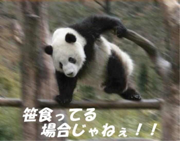 日本 名古屋 岐阜 暑い 熱中症