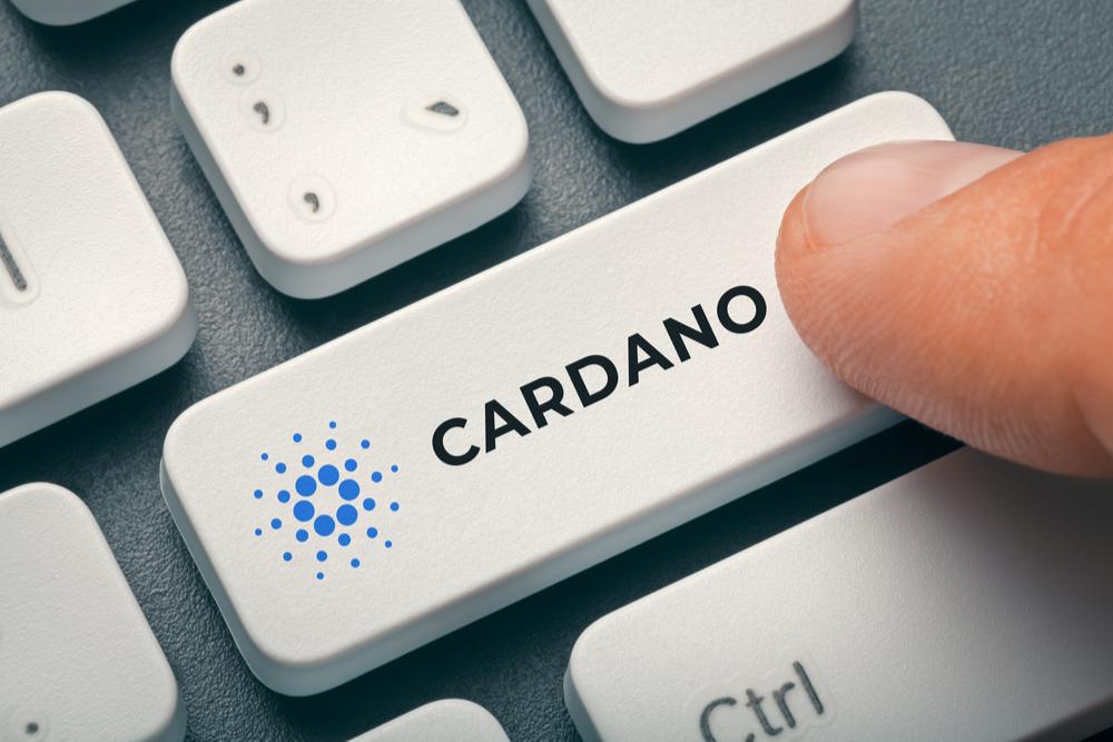 Cardano(カルダノ) スペシャルアナウンスメント 公開