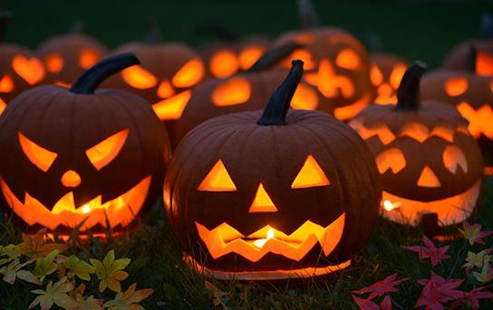 Coincheck(コインチェック) 10月30日 新規口座受付 一部通貨の入金と購入 再開