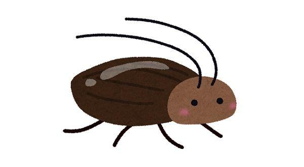 タイ 日本 違い ゴキブリ ネズミ