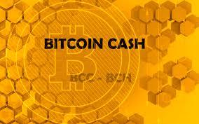 Bitcoin Cash(ビットコインキャッシュ) 30万円