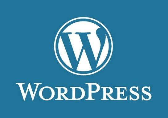 2018年 グーグルアドセンス(Google AdSense) wordpress(ワードプレス) テンプレート