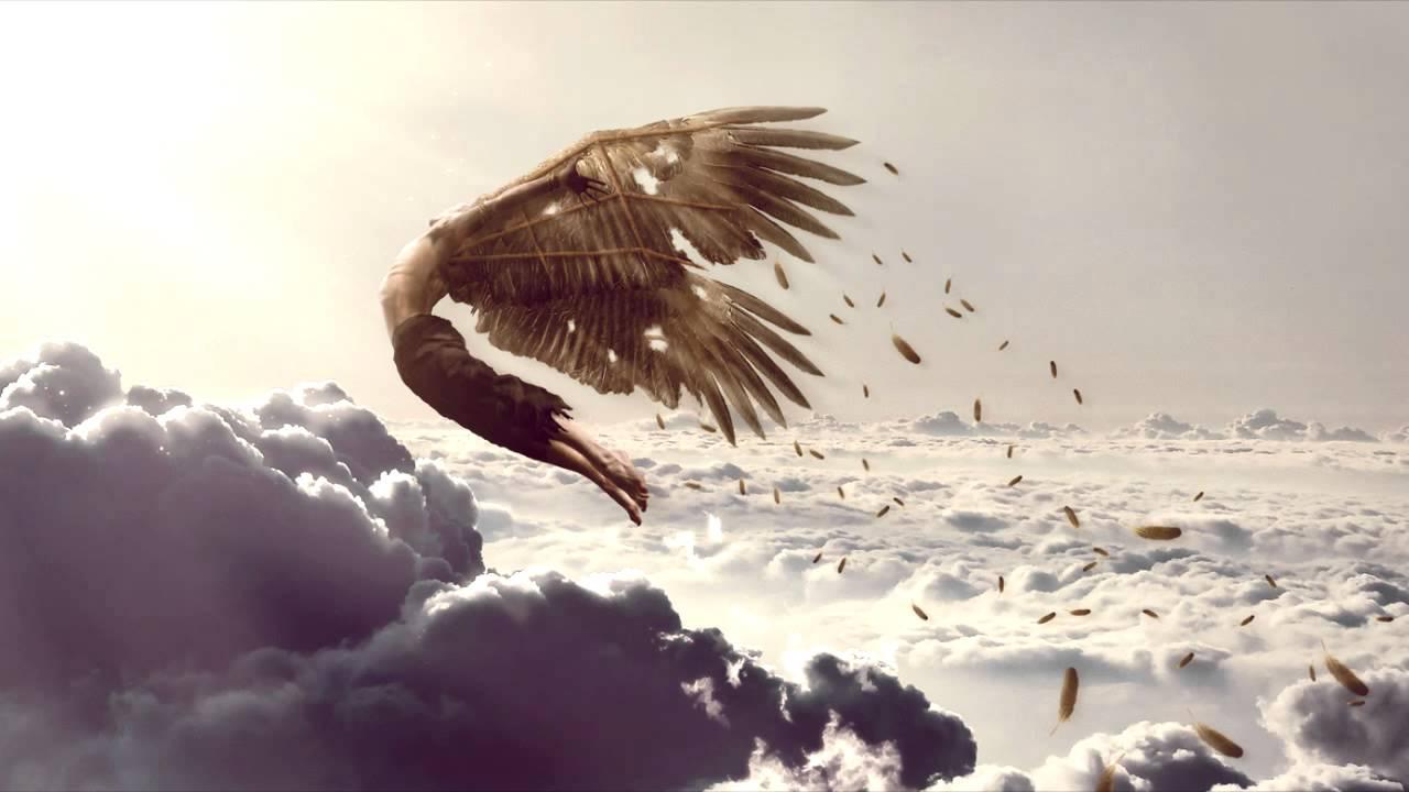 Cardano(カルダノ) Icarus(イカルス)