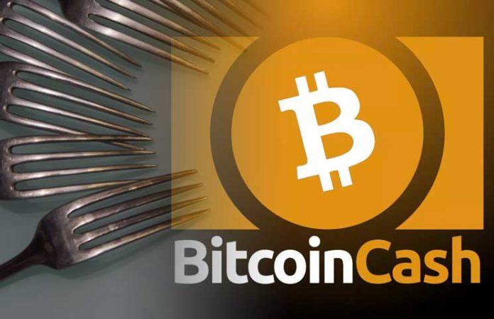 BitcoinCash(ビットコインキャッシュ) 11月15日 ハードフォーク