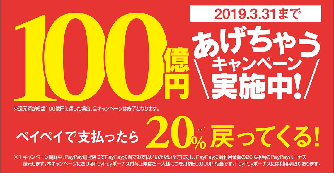 PayPay 100億円あげちゃうキャンペーン