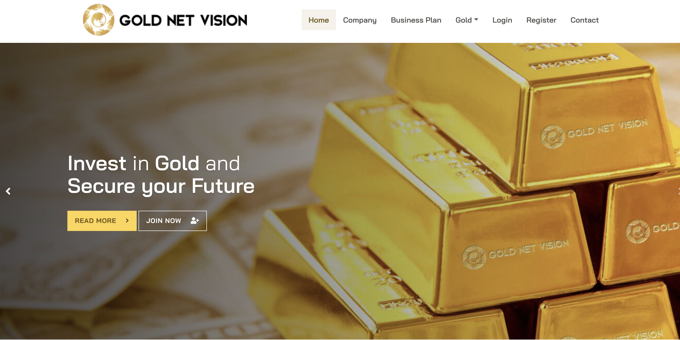 GOLD NET VISION(ゴールドネットビジョン)