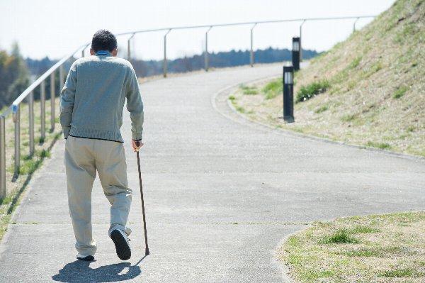 日本 2024年 3人に1人 65歳以上